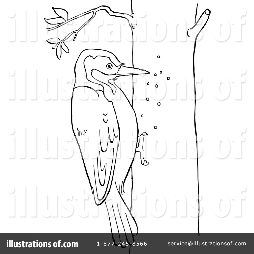 Woodpecker Clipart