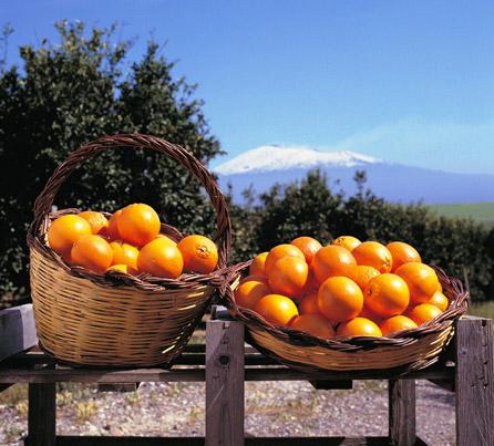 Alibaba porta le arance rosse di Sicilia in Cina