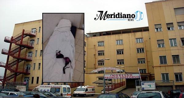 Scandalo in ospedale: un e #39;alcova nel bagno con lenzuola e preservativi
