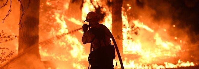 Un pompiere californiano all'opera