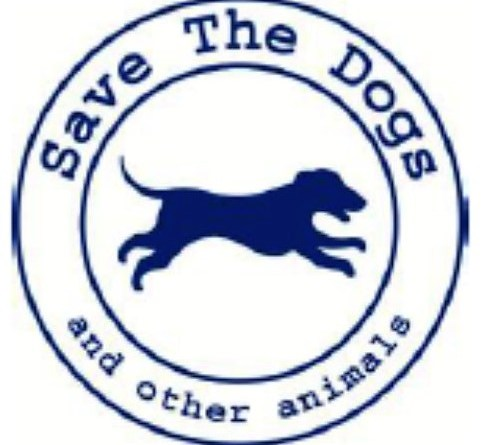 AL VIA IL PROGETTO DI SAVE THE DOGS IN ITALIA