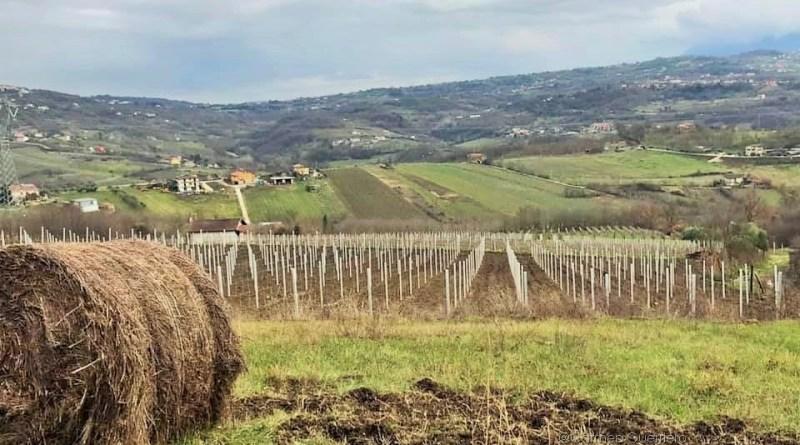 Nell'Anno nazionale del turismo lento l'Irpinia, è tra le province più belle d'Italia