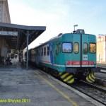 ALn6683243_Ascoli