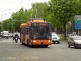 atc002_33filopanti