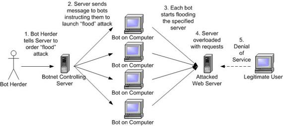 DDoS Botnet Attack
