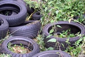A caccia di pneumatici nelle discariche abusive