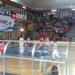 bcc-vasto basket