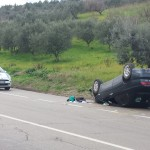 incidente statale