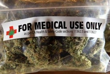 In Abruzzo via libera alla cannabis per uso terapeutico