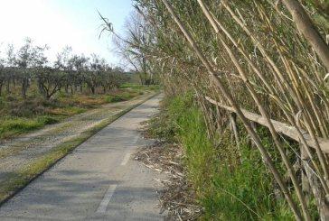 Nuova querelle sulla manutenzione della pista ciclopedonale della Lebba