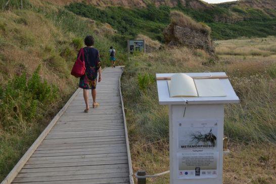 art in the dunes 2014 - 023