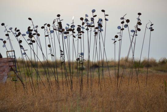 art in the dunes 2014 - 091