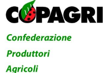 Maltempo, al tavolo regionale le richieste di Copagri Abruzzo