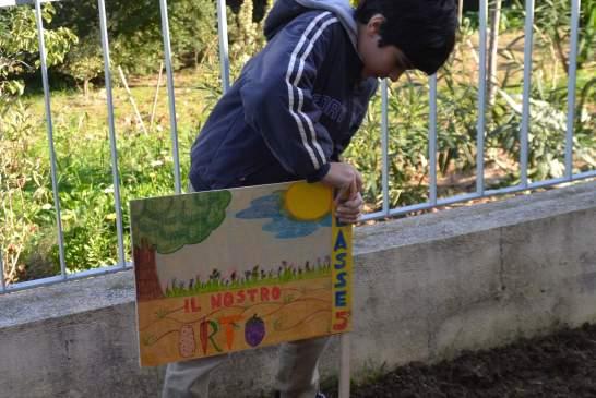 festa dell'albero-san lorenzo - 146