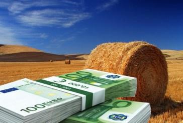 IMU terreni agricoli: si paga entro il 26 gennaio prossimo