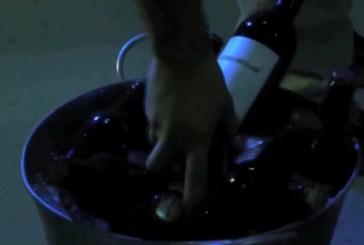 San Salvo: Educare per crescere nella legalità, non mettersi alla guida dopo aver assunto alcolici