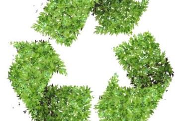Arriva a Vasto il piano del verde pubblico