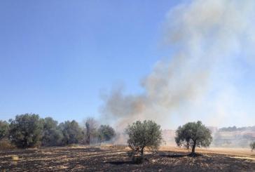 Vasto attaccata dal fuoco, incendi sempre più frequenti