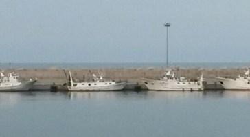 Fermo biologico, dal 15 agosto barche in porto