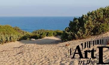 Una mostra fotografica dedicata ad Art in the dunes