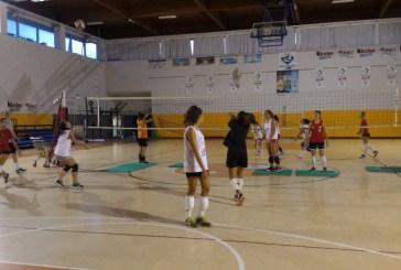 Bcc San Gabriele Volley, pronti per un nuovo anno