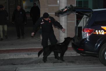 Narcotraffico con l'Albania, il riesame scarcera un indagato