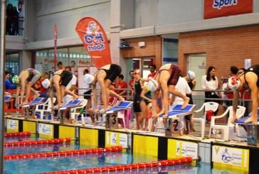 Nuoto, grande partecipazione al meeting di Vasto