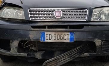 Cinghiale contro un'auto, denunciata la Regione