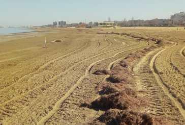 In Abruzzo via libera ai lavori di pulizia delle spiagge e degli orti