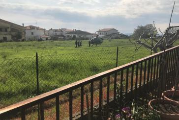 Ecco i carabinieri in volo a caccia di discariche