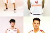 D'Annunzio, Di Rosso, Flocco e Cicchini lasciano la Vasto Basket