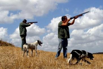 Stop alla caccia, Imprudente: