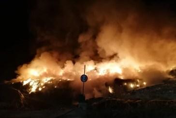 Incendi, Borrelli: