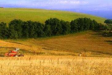 Giovani agricoltori, gli under 40 non pagheranno il canone per l'utilizzo del suolo a scopo agricolo
