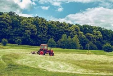 Agricoltura, al via il bando per giovani imprenditori