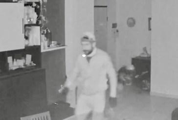 Diversi i furti messi a segno nel fine settimana, i Carabinieri rendono noto il volto di uno degli autori