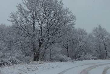 A Capracotta 10 centimetri di neve