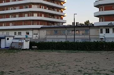 Pineta sparita a San Salvo Marina in 8 anni, è scontro sugli alberi tagliati