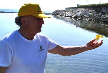 In Abruzzo metà dei punti analizzati sulla costa sono inquinati