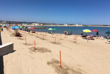 Montenero, attivo da oggi il servizio di controllo e gestione delle spiagge libere Covid-19