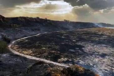 Parte della riserva di Punta Aderci distrutta dalle fiamme