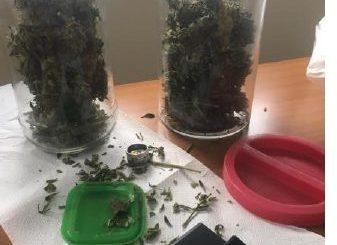 Trovato in possesso di quasi 2 etti di marijuana, una denuncia e due segnalazioni