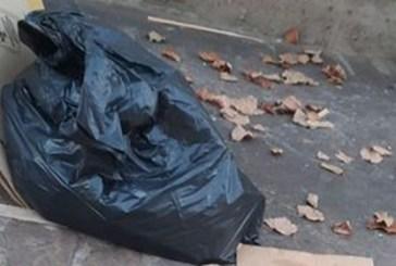 Positivo al Covid getta i rifiuti sulla strada. Pulchra: