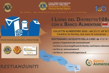 Colletta Alimentare, i Lions al fianco del Banco Alimentare