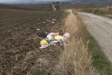Reati ambientali, a Montenero nel 2020 elevati oltre 50 verbali per abbandono di rifiuti