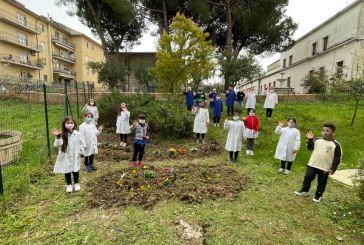 Nasce un piccolo giardino fiorito nella Scuola Primaria di Vasto: 56 le piantine messe a dimora dai bambini della 2C