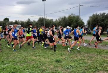 """Stracittadina di Scerni col segno """"più"""" e a prova di Covid per il campionato regionale Uisp di corsa campestre"""