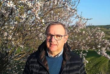 Dramma nei campi a Casoli, muore l'ex sindaco Sergio De Luca
