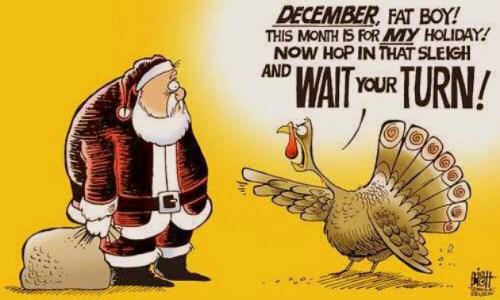 turkey and santsa