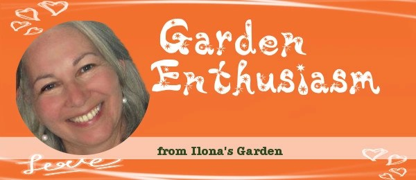 News About The Garden Enthusiasm Newsletter